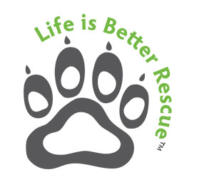 Life is Better Logo