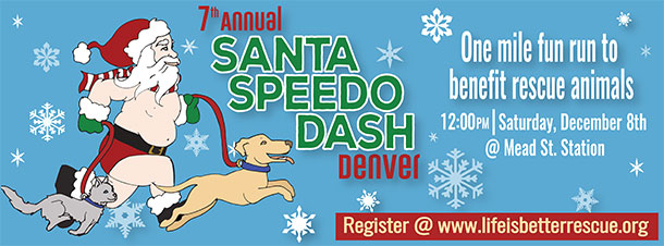 Santa Speedo Flyer